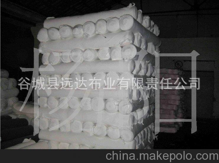 纱布坯布批发 110x76白色纺织坯布 服装面料