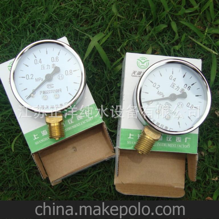 正洋环保 污水处理配件 仪器仪表 普通压力表0-1MPA