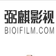 武汉弼麒商贸有限公司