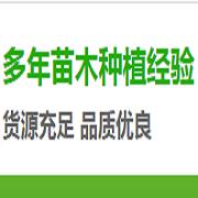 荆州市吴海涛苗木种植合作社