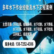 宜昌海豚水下工程有限公司