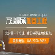 武汉万鸿景承加固工程有限公司